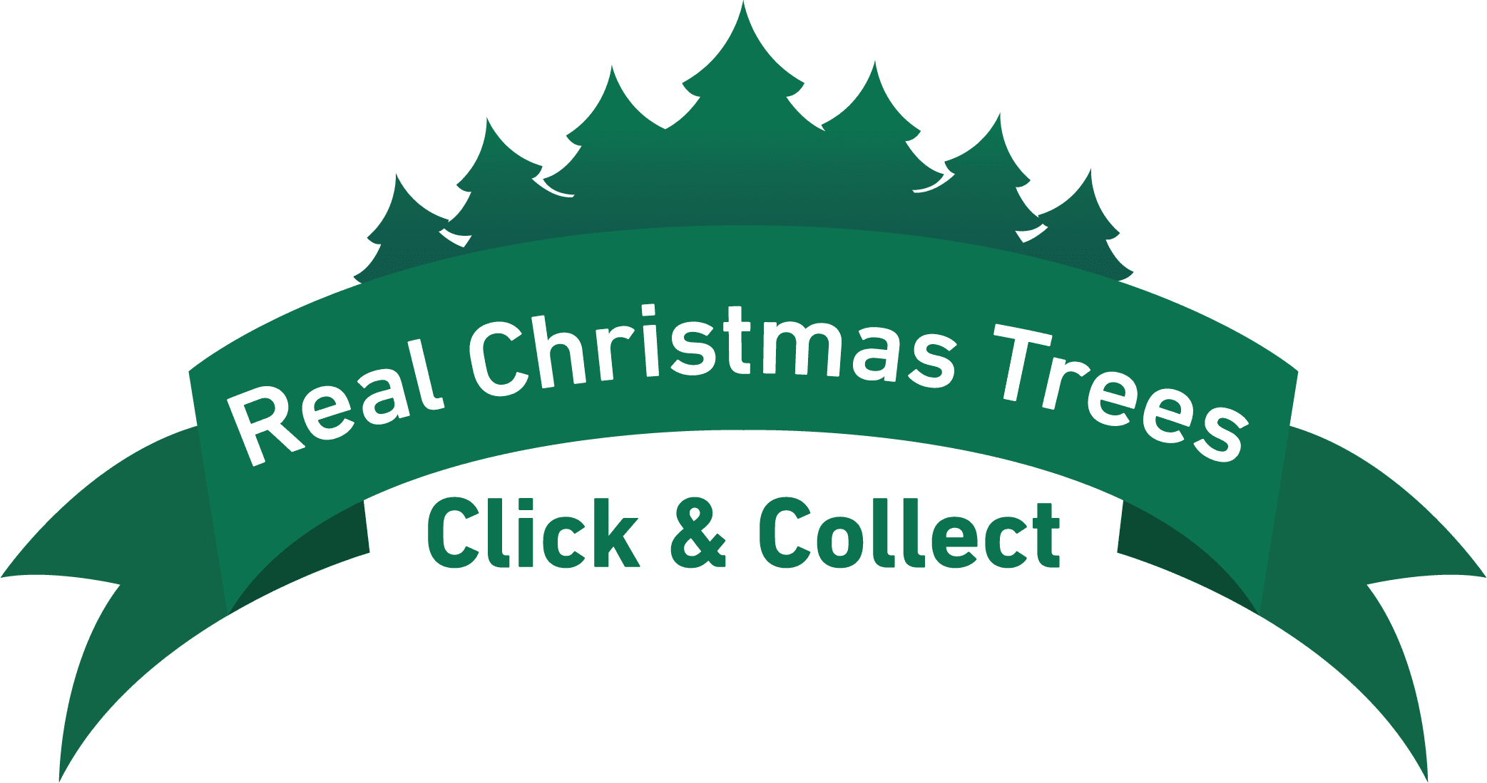 Real Christmas Trees - Click & Collect